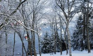 Snow blankets a small island in Maine. Nathaniel Hammond photo