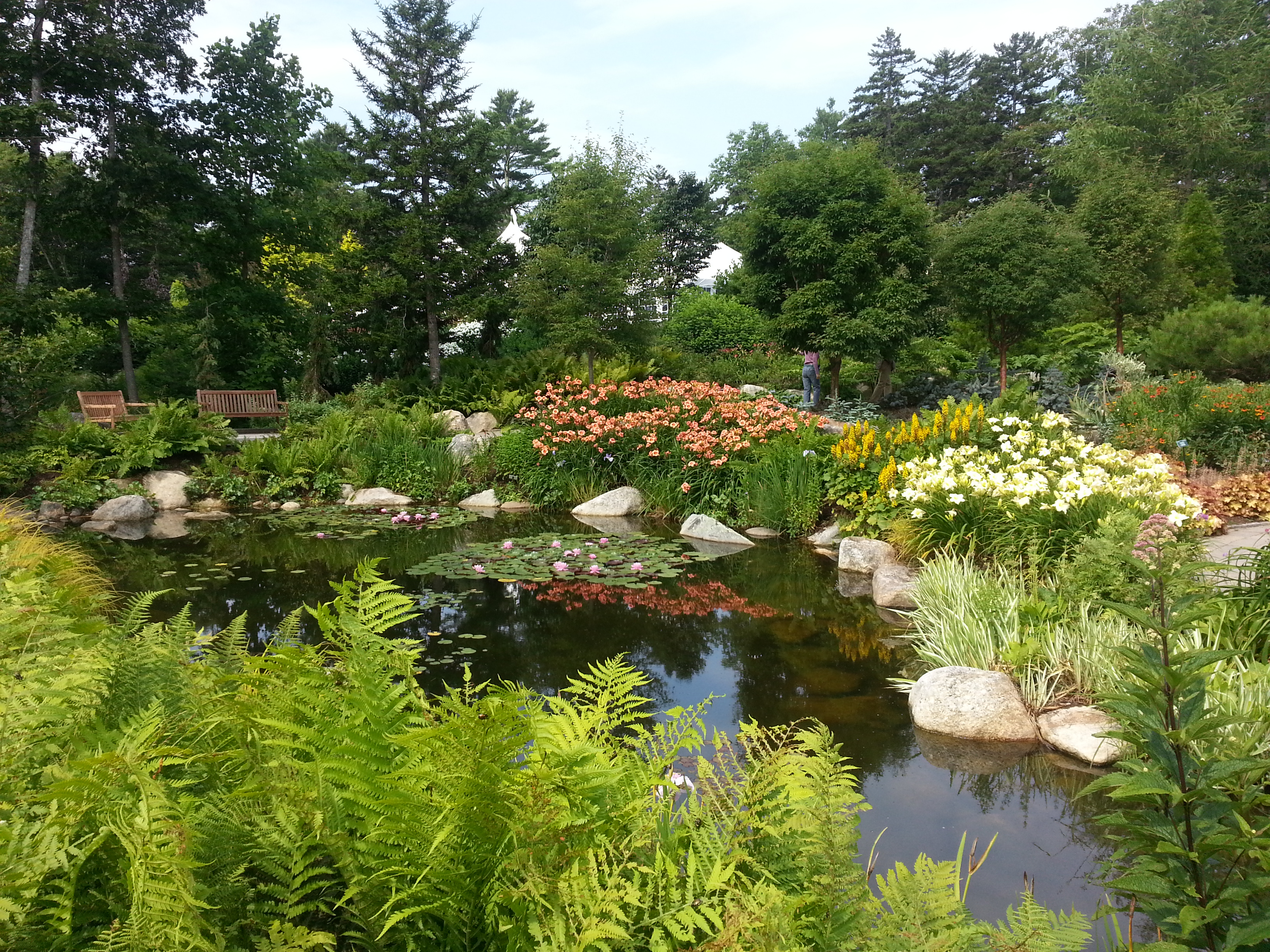 301 moved permanently - Botanical gardens boothbay harbor maine ...